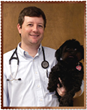 Dr. Jay Price, DVM and CEO of Southern Veterinary Partners