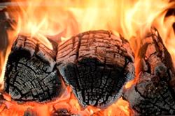Burning Firewwod