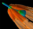 Tecplot 360 EX used by NASA to analyze CFD simulations of Orion's heat shield.