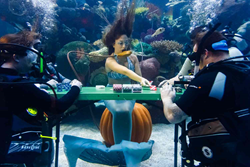 Silverton Casino hosted a poker game inside its aquarium on Friday, Nov. 6, 2015, to promote the nonprofit organization Dive Alliance, which supports veterans suffering from post-traumatic stress disorder.