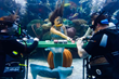 Underwater Poker Game Provides Support for Veterans at Silverton Casino