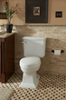 Brentwood toilet from Mansfield Plumbing