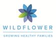 Wildflower Health Introduces Mi Embarazo Spanish Language Smartphone Program to Promote Healthy Pregnancies