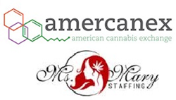 Amercanex and Ms. Mary Staffing Announce Strategic Alliance