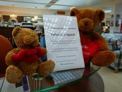 Morale Yorkhill Teddy campaign