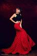 Sam Nguyen-Di Ai Hong Sam, Ms. Texas Woman Of Achievement 2015