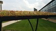 LiveRoof® Hybrid Green Roof Installed by BGSU's Campus Sustainability on Bike Shelters, Carillion Dining Center to Manage Stormwater, Support Reduce Carbon Footprint