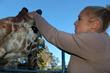 lotl-iniosante-giraffe-pov-oakland_zoo-phelps-01WEB.jpg