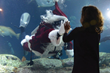 Celebrate the Holiday Sea-son at the South Carolina Aquarium
