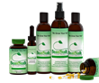 BeanStalk Hair Loss Treatment Reaches Three Hundred Positive Reviews from Women on Amazon.com