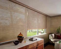Hunter Douglas Designer Screen Shades from Decorview