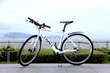 LIVALL Oxygen Alps Bicycle