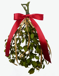 Mistletoe.com Begins Shipments of Healthy & Strong Oregon...