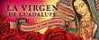 La Virgen De Guadalupe: Empress of the Americas