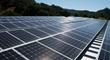Joseph Phelps Vineyards Announces Solar Initiative