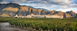 Argentina Winery PIATTELLI Makes Investments to Increase Capacity