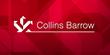 Congratulations to Collins Barrow's 2015 CPA Final Exam Grads