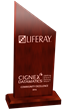 CIGNEX Datamatics Wins Community Excellence Award 2015 from Liferay for 5th Consecutive Year
