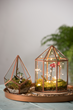 Holiday gifts, such as terrariums, provide year round enjoyment by enabling people to grow no matter the weather outside.