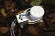 eosAC autochamber in rain forest