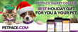 PetPace Wearable Pet Health Tech Showcased on Canada's Marilyn Denis Show