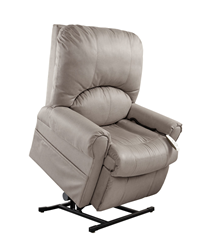 Mega Motion Power Lift Recliner