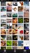 DreamMaze image library