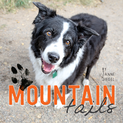 mountain-tails