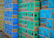 Detroit-based Evans Distribution Provides Fulfillment Services for Girl Scouts Digital Cookie