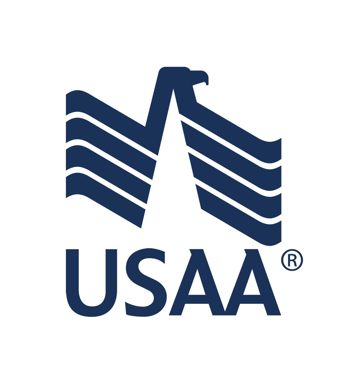 technology of usaa From a facebook chatbot to a demonstration of the power of blockchain, usaa's employees are working on all kinds of ideas tuesday they showcased their works in progress and recent launches.