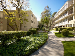 Morton Gardens Apartment Homes in the Hills of Echo Park is now managed by The REMM Group.