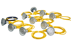 Work Area LED String Light Set Equipped with Five 25 Watt LED Lamps