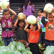 PCI Is Helping to End World Hunger by Feeding 38,000 Students in Guatamala