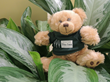 Meet Hope the Teddy Bear, The Inn at Longwood Medical's Mascot
