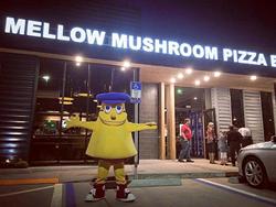 Mellow Mushroom Jacksonville