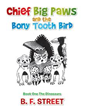 B.F. Street releases 'Chief Big Paws and the Bony Tooth Bird'