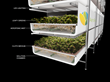 AeroFarms Takes New Agricultural Paradigm  of 75 times greater productivity with 95% less water to Washington