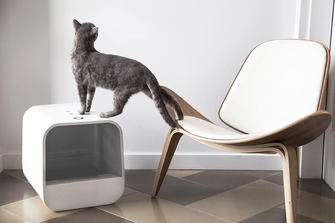 Introducing the grand poobox modern form meets litter box functionality - Modern kitty litter box ...