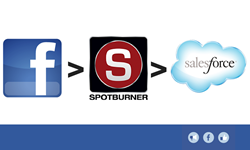 Facebook, Spotburner, Salesforce Lead Conversion Process