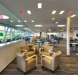 Corporate Café with ELPu0027s u201cSlot in the Ceilingu201d Cast Lighting Fixtures. Photographer Andy Ryan & ELP Lighting Introduces 3 Popular Product Lines Expanding with LED