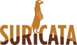 Suricata Community Kicks It Up a Notch - 4.0 Released!