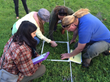 Learning how to do a plant transect.