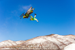 Monster Energy's Joe Parsons Wins Gold in Snowmobile Freestyle X Games Aspen 2016