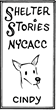 "Cartoonist Patrick McDonnell's Experience at New York City Animal Shelter Inspires  ""Shelter Stories,"" Weeklong Mutts Comic Strip Series"