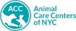 Animal Care Centers of NYC (ACC)