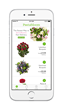 Postabloom, a new flower delivery app, launches today and offers fresh flowers delivered fast for Valentine's Day