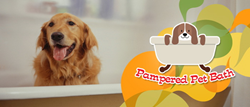The Pampered Pet Product is a premium pet invention that will not only make bathing your pets much easier but will also pamper your furry loved ones!