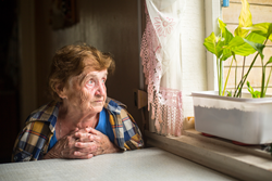 Senior Loneliness in America