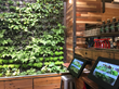 Living Wall by SolTerra is Cornerstone to Kroger's New Brand Launch