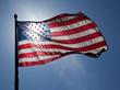 Alex Figliolia Jr. - Trump vs Hillary Clinton to Replace President Obama
